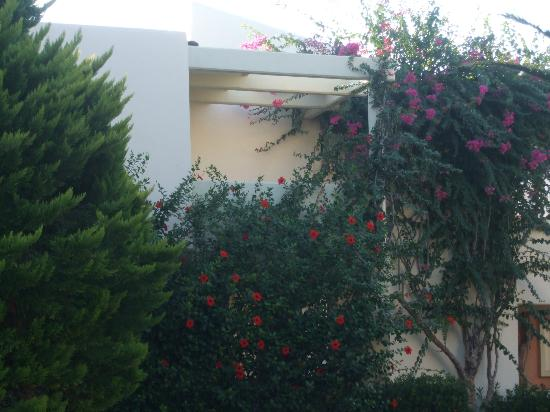 Kipriotis Village Resort: First floor Room Balconey 