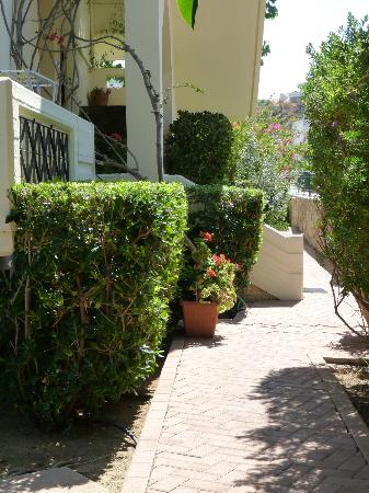 Lefka Apartments: Hotel grounds