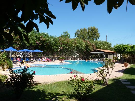 Lefka Apartments: The pool