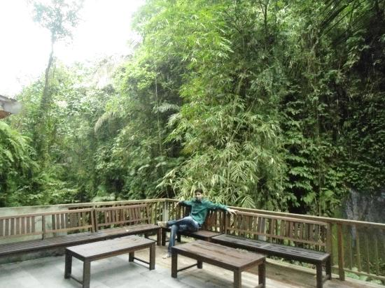 Alam Ubud Culture Villas & Residences: sitting Area over water fall