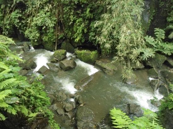 ألام أوبود كالتشر فيلاز آند ريزيدنسيز: water fall 