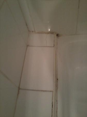 Hotel Le Saint Remy : joints de la douche