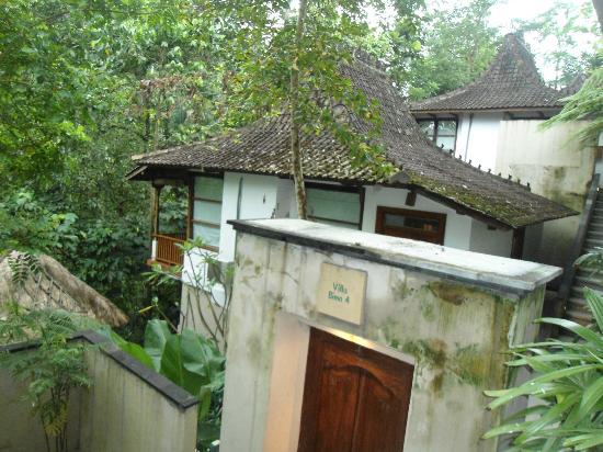Alam Ubud Culture Villas & Residences: Villas