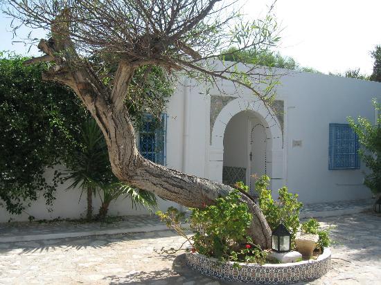 Residence Dar Sidi : Une autre entrée