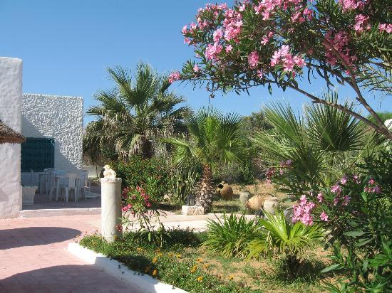 Residence Dar Sidi : Le jardin