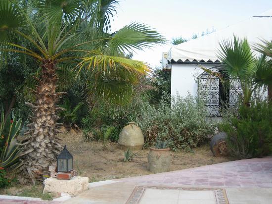 Residence Dar Sidi : Jardin près de la chambre tente berbère