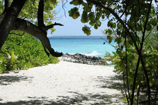写真Asdu Sun Island枚