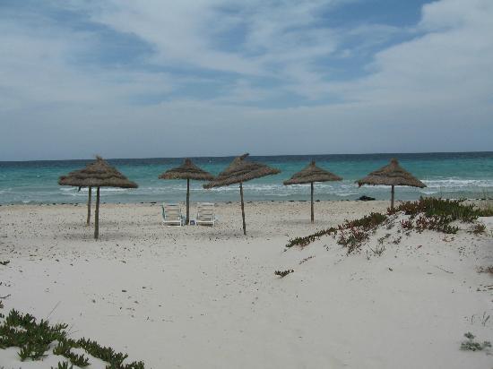 Residence Dar Sidi : La plage