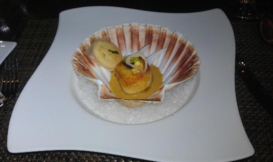 Castle Terrace Restaurant: Starter: Seared hand dived Orkney scallops served with celeriac and curry.