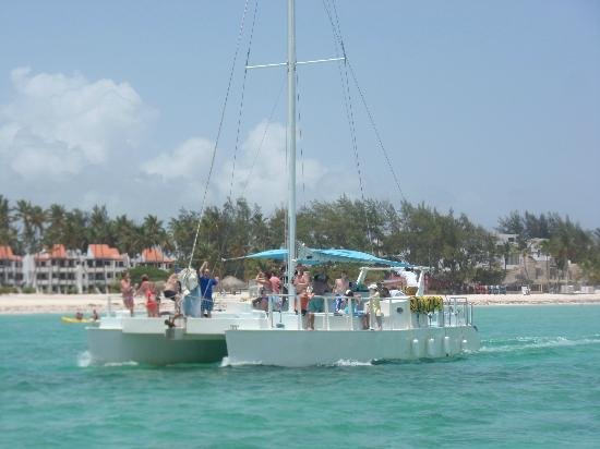 Marinarium Excursions - Sunny Day Sailing Cruise: The catamaran