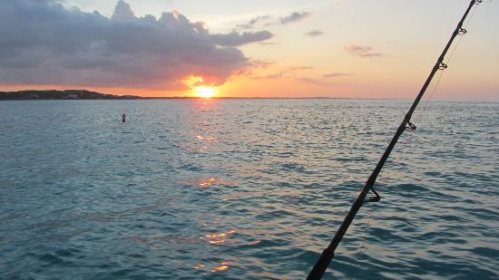 Island Vibes Tours: caribbean sunset