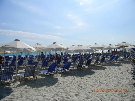 Maya Bay Hotel: beach