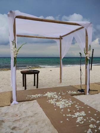 لو ريف هوتل آند سبا: Wedding canopy.... seating for 90 on beach 