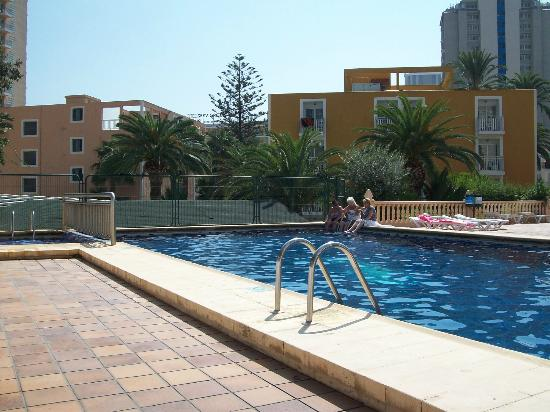 Palm Court Apartments: The pool