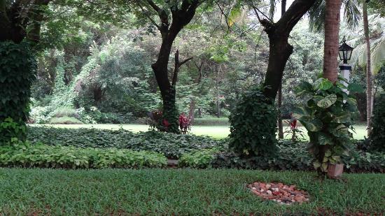 Taj Exotica Goa: herb garden tour