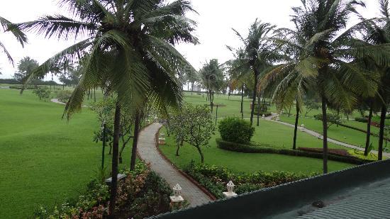 Taj Exotica Goa: lush green lawn