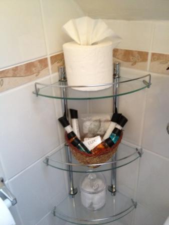 Llwyn Onn Guest House: super toiletries offered
