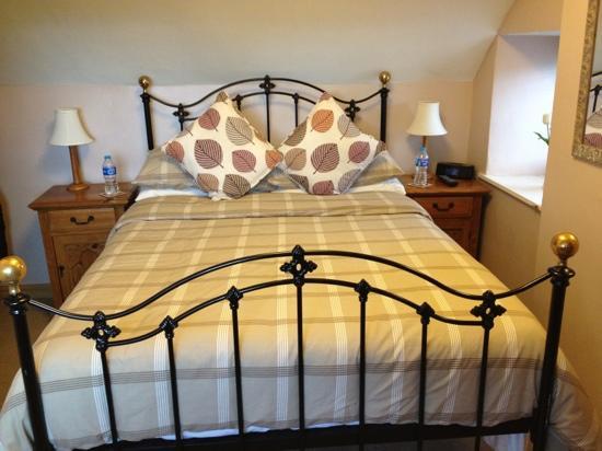 Llwyn Onn Guest House: Mountain View room
