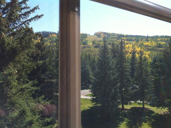 Tivoli Lodge: View from the room