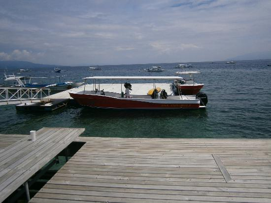 El Galleon Beach Resort & Hotel: Asia Divers Diveboat Type 1