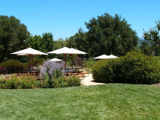 Lambert Bridge Winery: Outdoor area