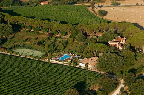 Villa Acquaviva - La Fattoria: vista delle vigne dall'alto - our vineyards by the sky
