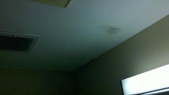 Econo Lodge Inn and Suites: Mold on bathroom ceiling