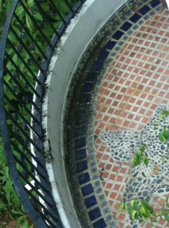Hotel Yatzil: Balcón con moho