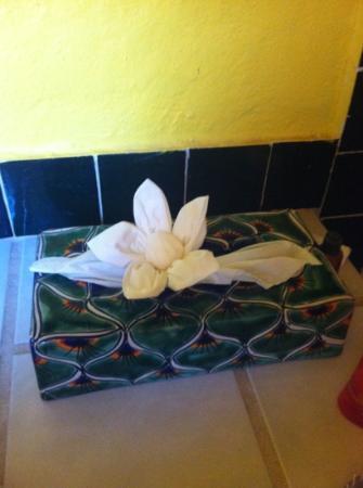 Estrella Del Mar Resort Mazatlan: nice detail