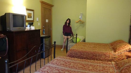 Hotel Manoir de la Terrasse: Quarto 2 camas