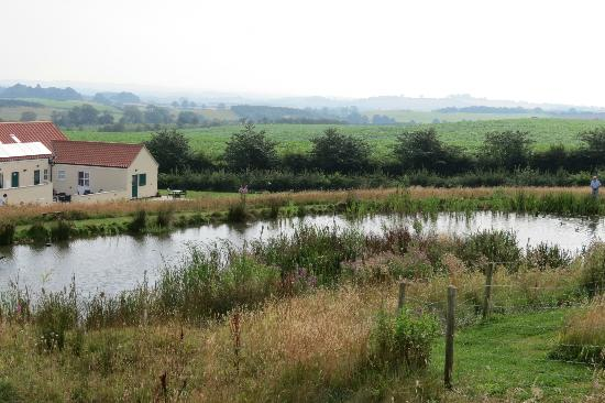 Greetham Retreat Holidays : View across the pond