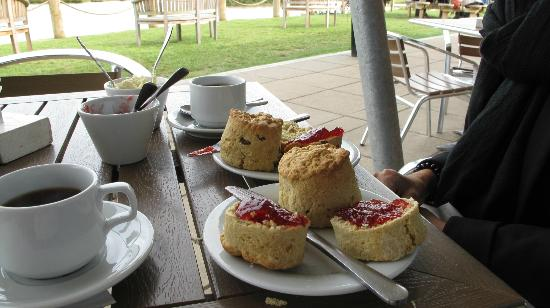 Wooldown Holiday Cottages: Cream Tea at Weir's Cafe