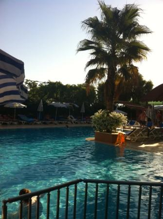 Vital Beach Hotel: nice, clean swimming pool
