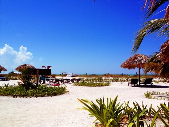 Xaloc Resort: View from the palapas by the sea!