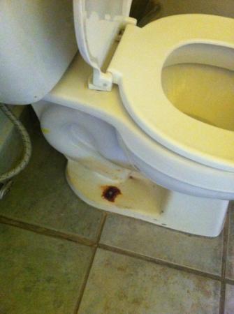 Estrella Del Mar Resort Mazatlan: toilet