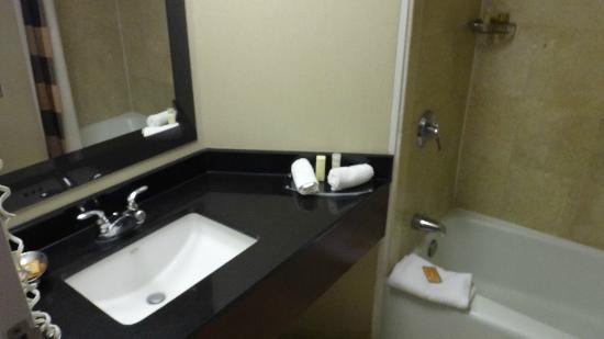 Hyatt Regency Montreal: banheiro