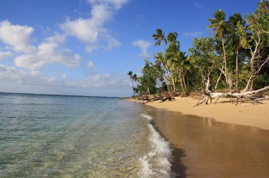 Captain Cook's Hideaway: lonely beach