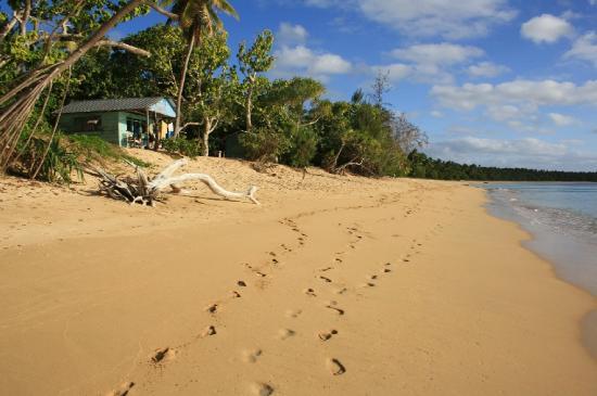 Captain Cook's Hideaway: beach