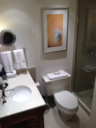 The Westin Calgary: Pleasant, but cramped bathroom