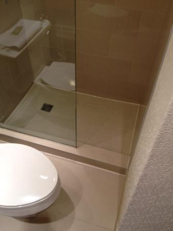 The Westin Calgary: Small space between toilet and shower