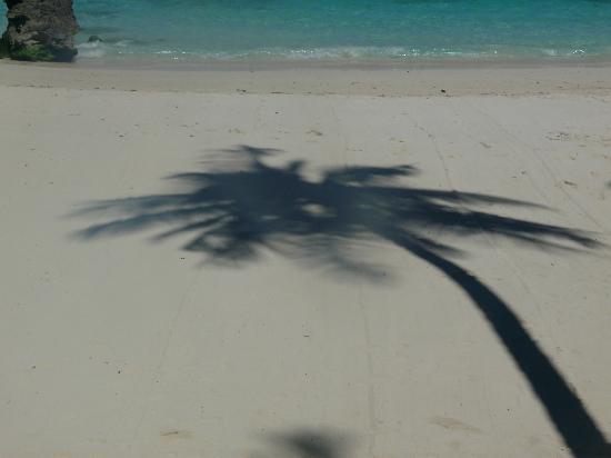 Asya Premier Suites: The Beach
