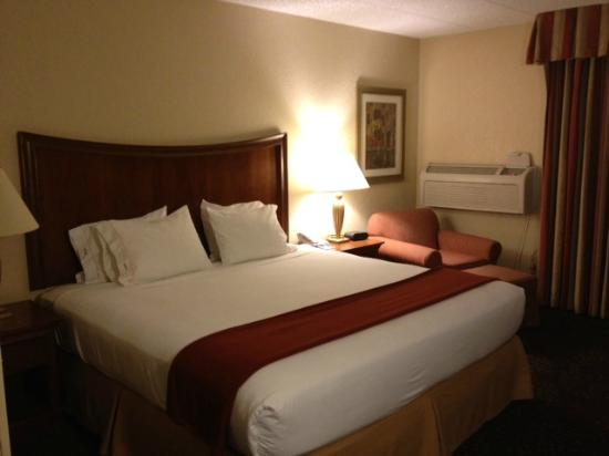 Holiday Inn Express Chicago Downers Grove: Standard room