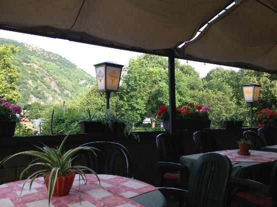 Hotel Kranenturm: Back patio along the Rhine. Beautiful flowers everywhere!