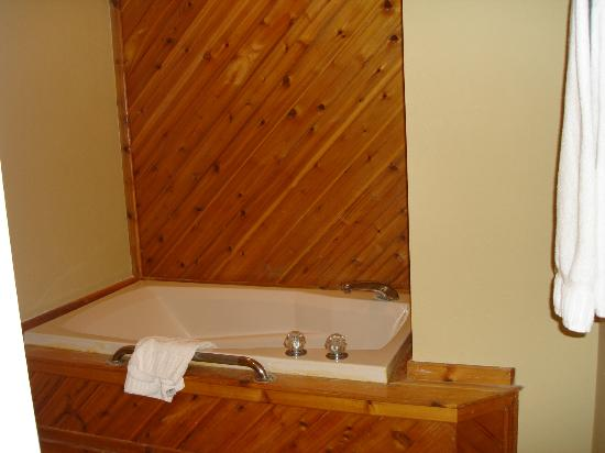 The Historic Powhatan Resort: Second bath