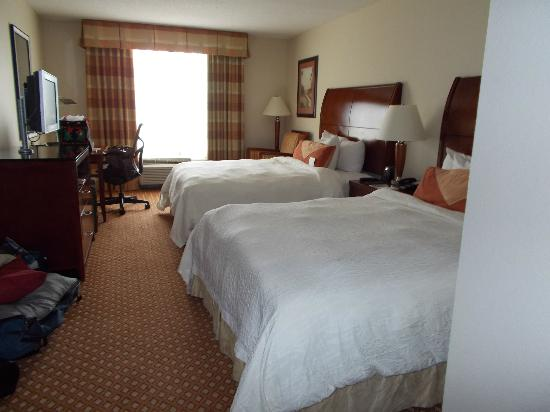 Hilton Garden Inn Savannah Midtown : Double Room