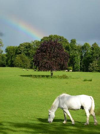 Temple House: Rainbow after a brief Ireland shower