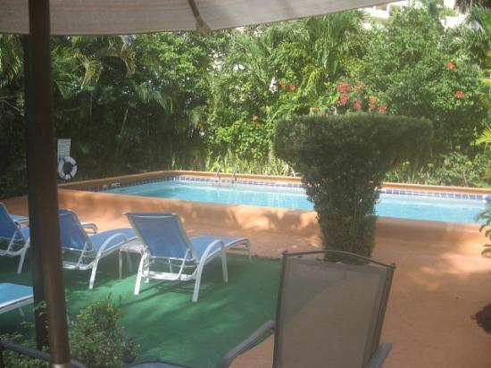 Grand Palm Plaza: beautiful pool