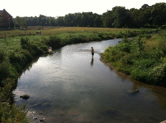 Eby Farm Bed & Breakfast: Fly fishing in the creek
