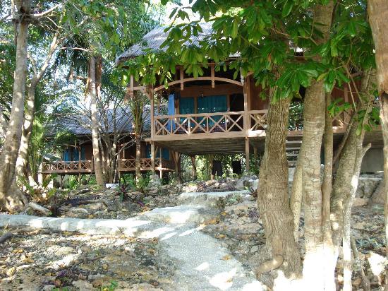 Hoga Island Dive Resort: Bungalow