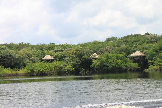 Juma Amazon Lodge: Lodge